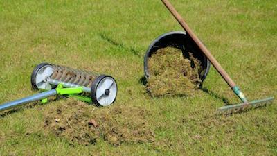 comment scarifier votre pelouse le guide lectrique. Black Bedroom Furniture Sets. Home Design Ideas
