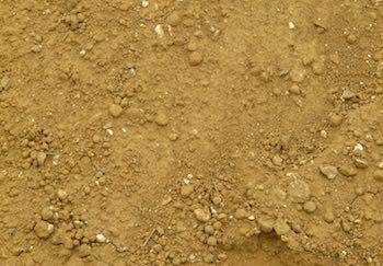terre sabloneuse