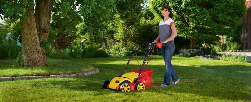 Scarificateur Wolf Garten en action sur pelouse