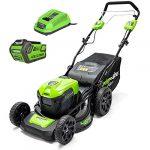 Greenworks Tondeuse gd40lm46hpk4 – avec batterie